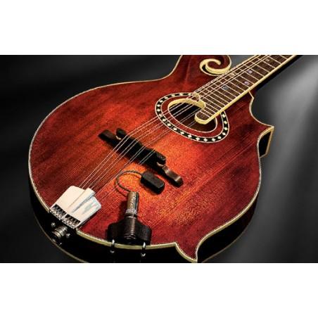 LR BAGGS Radius Mandolin™ Pickup