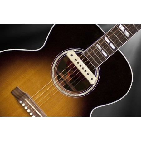LR BAGGS M1 Active Magnetic Soundhole Pickup
