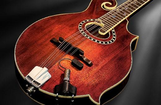 Baggs Mandolin Pickup